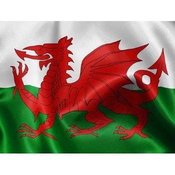 Флаг Уэльса (135 х 90 см)