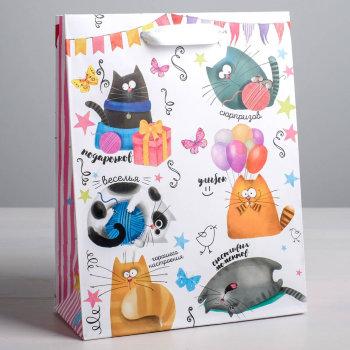 """Подарочный пакет """"Поздравления от котиков"""" (27 х 23 х 8 см)"""