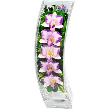 Орхидеи в стекле SqCO (30,5 см)