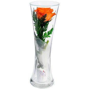 Роза в стекле CuHRo (22 см)