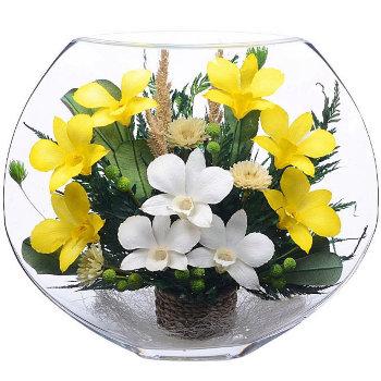 Орхидеи в стекле EMO-02 (25 см)