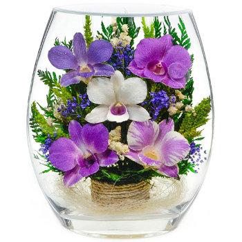 Орхидеи в стекле EHO3 (18 см)