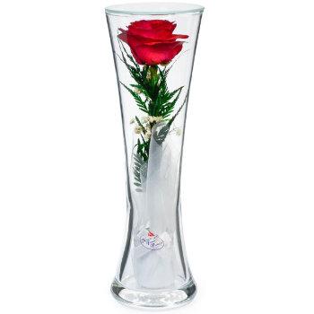 Роза в стекле CuHR2 (22 см)