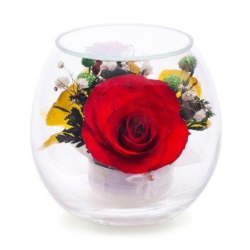Розы и орхидеи в стекле BmiM-06 (9 см)