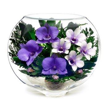 Орхидеи в стекле ESO-01 (20 см)