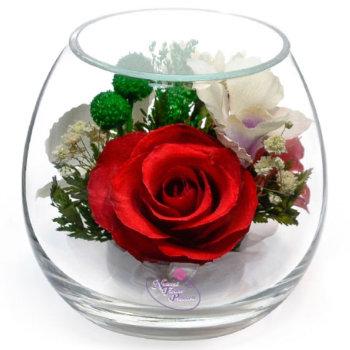 Розы и орхидеи в стекле BmiM-08 (9 см)