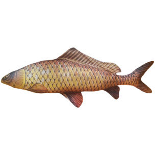"""Подушка в виде рыбы """"Сазан"""" (65 см)"""