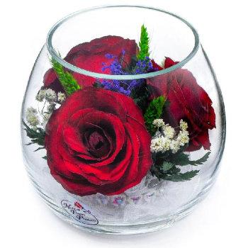Розы в стекле BmiR (9 см)
