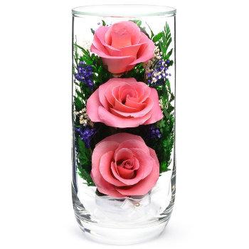Розы в стекле CSRp (15 см)