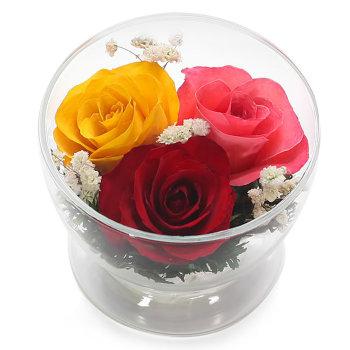 Розы в стекле CuSr5с (8,5 см)