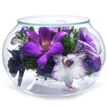 Орхидеи в стекле CaSO (11 см)