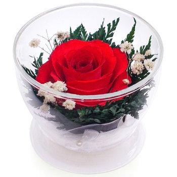 Роза в стекле CuSr1 (8,5 см)