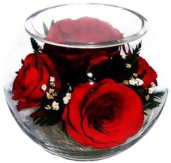 Розы в стекле BSR1 (12 см)