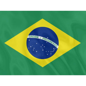 Флаг Бразилии (135 х 90 см)