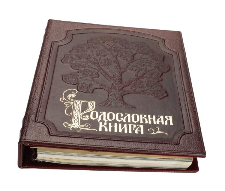 Родословная книга скрапбукинг мастер класс