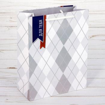 "Подарочный пакет ""Презент для тебя"" (27 х 23 х 8 см)"