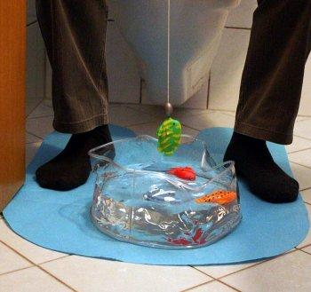 """Игра для туалета """"Рыбалка"""""""