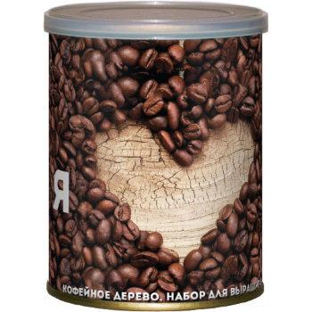 """Набор для выращивания кофейного дерева """"Я люблю кофе"""""""