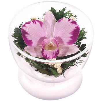 Орхидея в стекле CuSO3 (8 см)